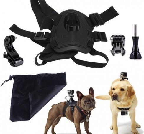 dog-harness-chest-fetch-strap-belt-mount-1